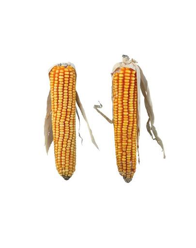 Kolby kukurydzy 2 szt. / 250 g