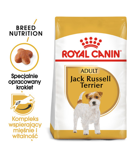 Jack russell terrier adult 3 kg