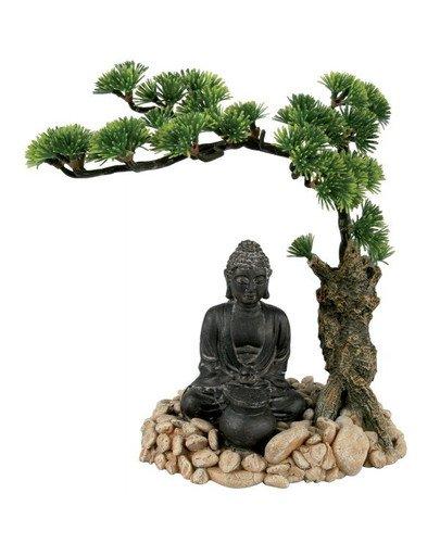 Dyfuzor bonzai Budda