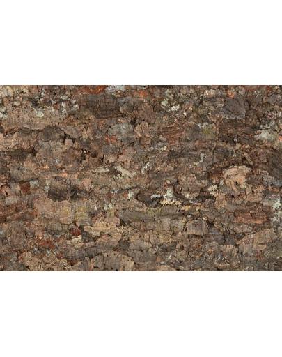 Ścianka Korkowa Do Terarium 90X60cm