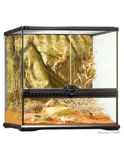 Terrarium szklane SMALL 45x45x45cm
