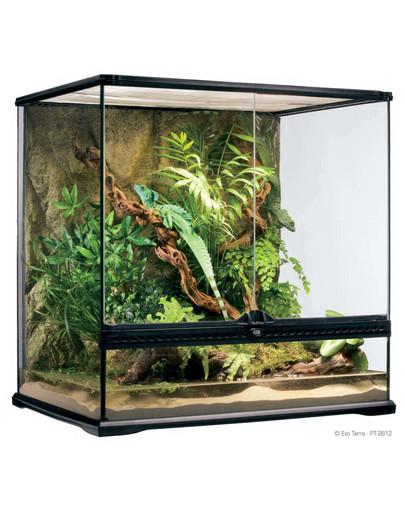 Terrarium szklane MEDIUM 60x45x45cm