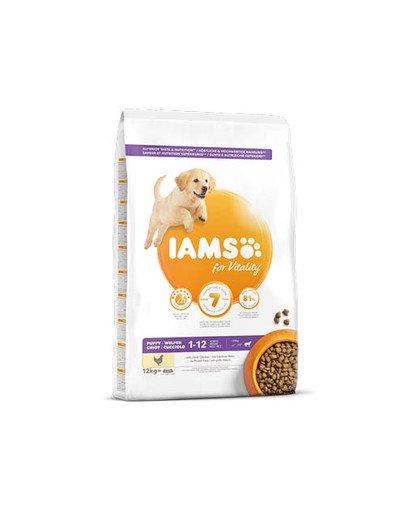 ProActive Health Puppy & Junior Large Breed Chicken 12 kg