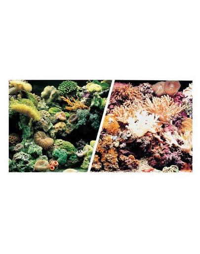 Dwustronne tło do akwarium Rafa/Koral 45cmx7.5m