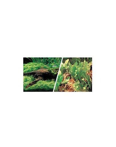 Dwustronne tło do akwarium Japoński krajobraz/rośliny i kamienie 45cmx7.5m