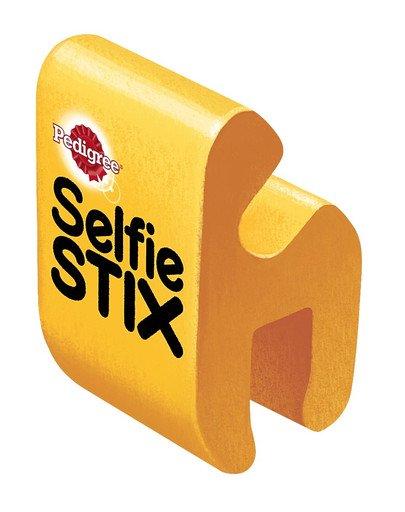 SelfieSTIX