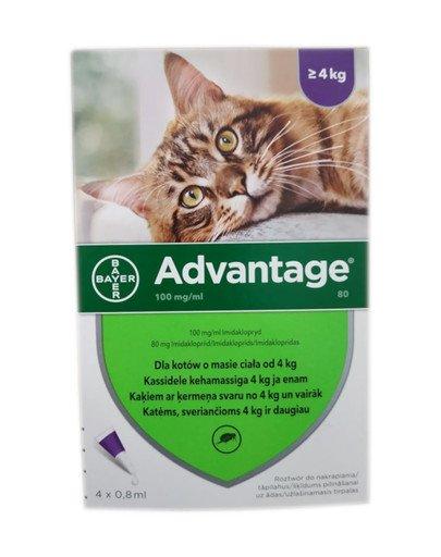 ADVANTAGE Roztwór do nakrapiania dla kotów powyżej 4 kg (4 x 0,8 ml)