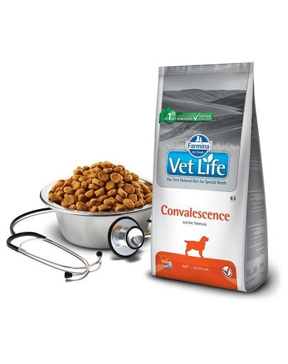 Vet Life Convalescence Dog 2 kg