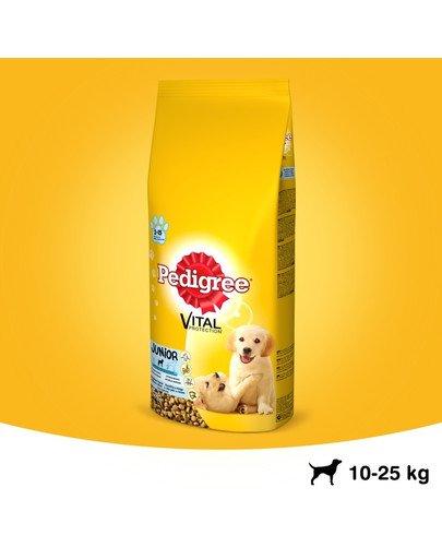 Junior średnie rasy kurczak z ryżem 8.4 kg