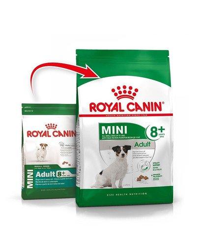Mini Adult 8+ 4 kg karma sucha dla psów starszych od 8 do 12 roku życia, ras małych