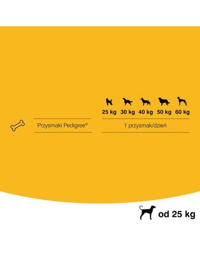 Dentastix duże rasy 16 x 270 g