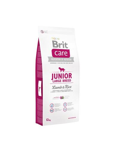 Care Junior Large Breed lamb & rice 12 kg