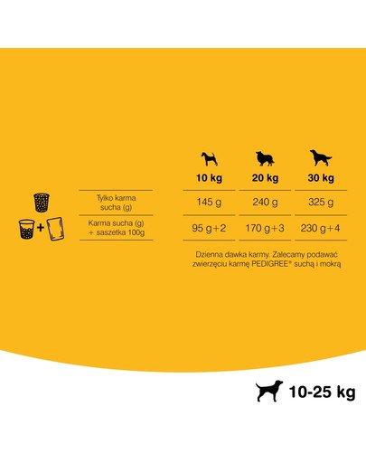 Adult wołowina i drób 15 kg