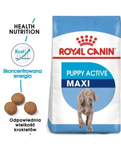 Maxi Puppy Active 15 kg karma sucha dla szczeniąt ras dużych o wyższym zapotrzebowaniu energetycznym