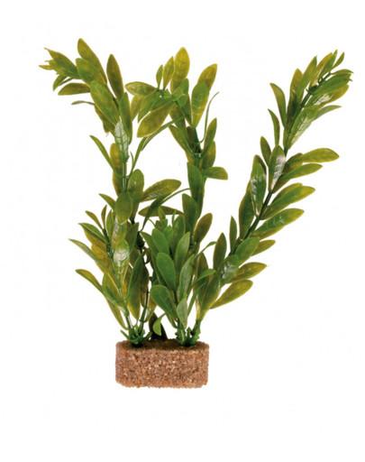 Roślina na kamieniu mała 12 cm 6 szt.