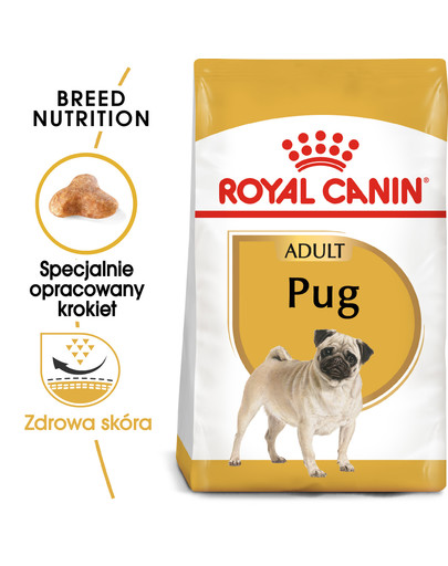 Pug adult 1.5 kg