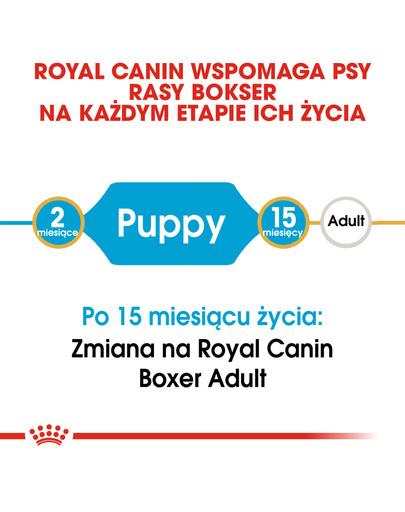 Boxer 30 junior 12 kg