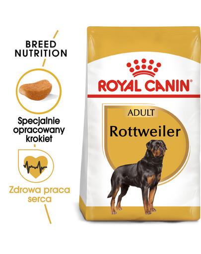 Rottweiler 12 kg