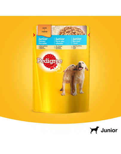 Junior kurczak i ryż w galaretce 0.1 kg