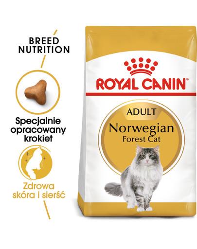 Norvegien 400 g karma sucha dla kotów dorosłych rasy norweski leśny