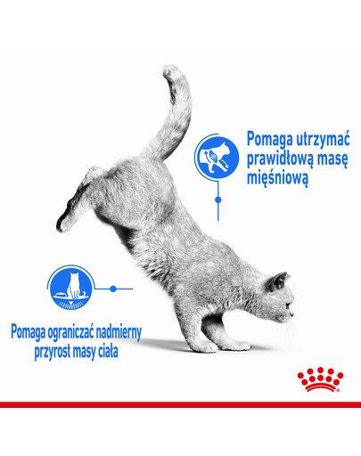Light Weight Care 10 kg karma sucha dla kotów dorosłych, utrzymanie prawidłowej masy ciała