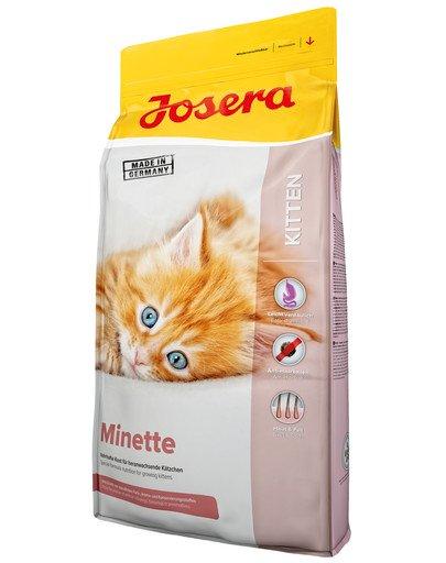 Cat Minette 10 kg dla kociąt