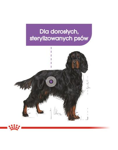 Maxi Sterilised karma sucha dla psów dorosłych, ras dużych, sterylizowanych 3 kg