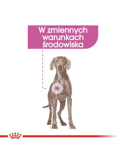 Maxi Relax Care karma sucha dla psów dorosłych, ras dużych, narażonych na działanie stresu 9 kg