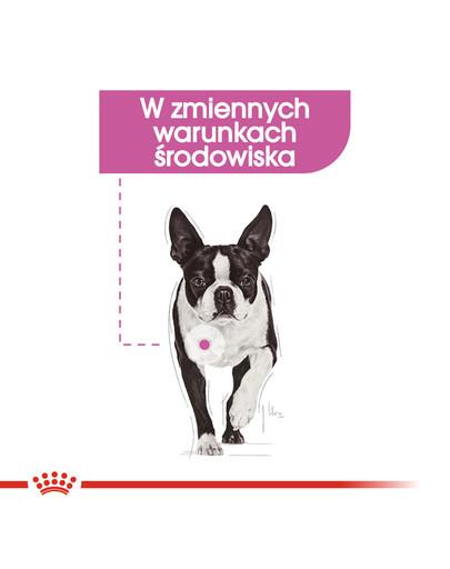 Mini Relax Care karma sucha dla psów dorosłych, ras małych, narażonych na działanie stresu 1 kg