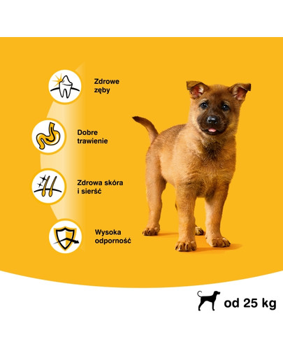 Junior 15kg (duże rasy) - sucha karma dla psów z kurczakiem i ryżem