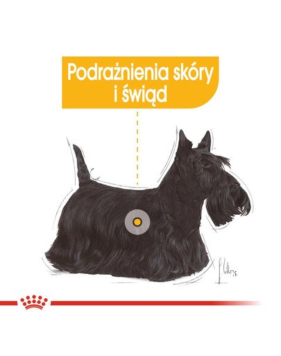Dermacomfort karma sucha dla psów dorosłych, ras małych, o wrażliwej skórze, skłonnej do podrażnień 8 kg