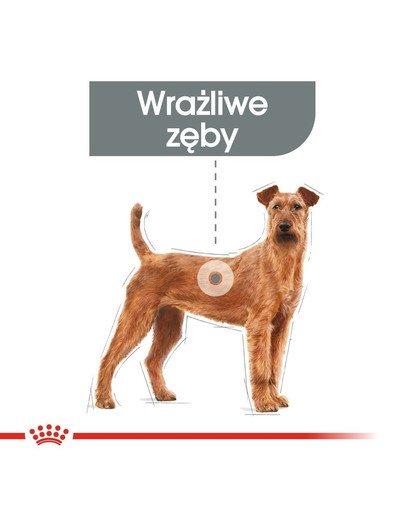 Medium Dental Care karma sucha dla psów dorosłych, ras średnich, redukująca powstawanie kamienia nazębnego 10 kg