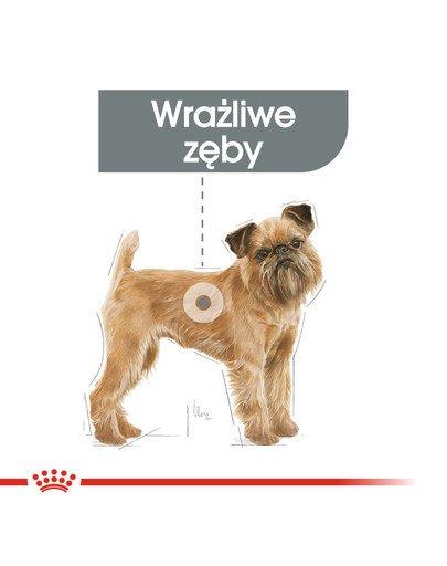 Mini Dental Care karma sucha dla psów dorosłych, ras małych, redukująca powstawanie kamienia nazębnego 1 kg