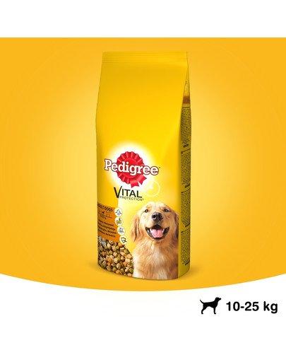 Adult 15kg (średnie rasy) - sucha karma dla psów z drobiem i warzywami