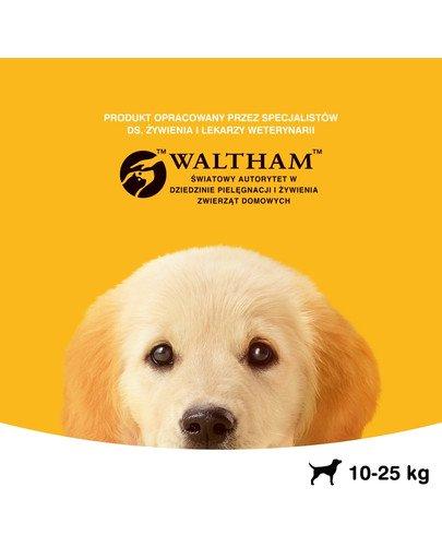 Junior 15kg (średnie rasy) - sucha karma dla psów z kurczakiem i ryżem