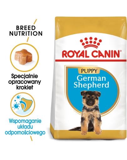 German Shepherd Puppy karma sucha dla szczeniąt do 15 miesiąca, rasy owczarek niemiecki 12 kg