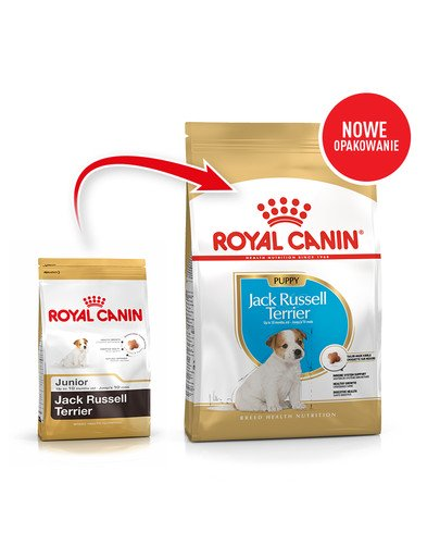 Jack Russell Terrier Junior karma sucha dla szczeniąt do 10 miesiąca, rasy jack russel terrier 3 kg