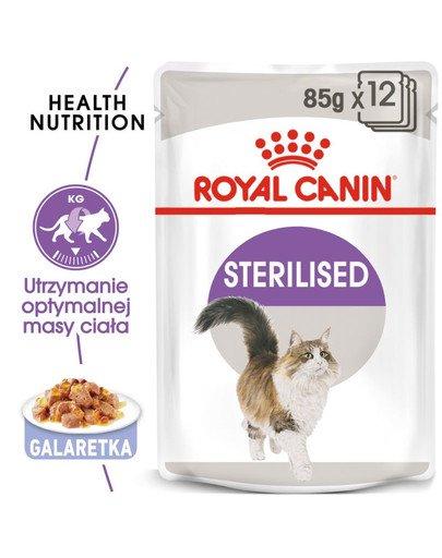 Sterilised w galaretce karma mokra w galaretce dla kotów dorosłych, sterylizowanych 12 x 85 g