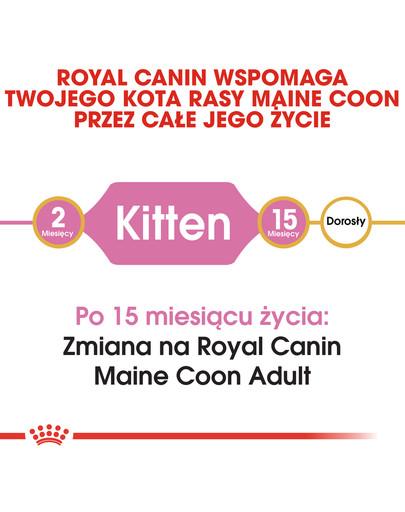 Maine Coon Kitten karma sucha dla kociąt, do 15 miesiąca, rasy maine coon 400 g
