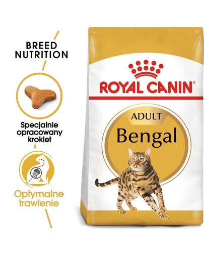 Bengal Adult karma sucha dla kotów dorosłych rasy bengal 2 kg