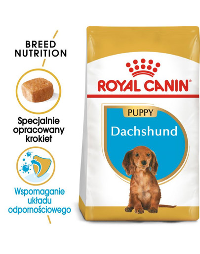 Dachshund Junior karma sucha dla szczeniąt do 10 miesiąca, rasy jamnik  1.5 kg