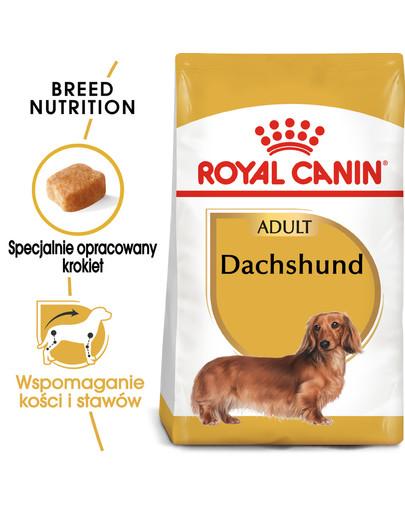 Dachshund karma sucha dla psów dorosłych rasy jamnik  7.5 kg