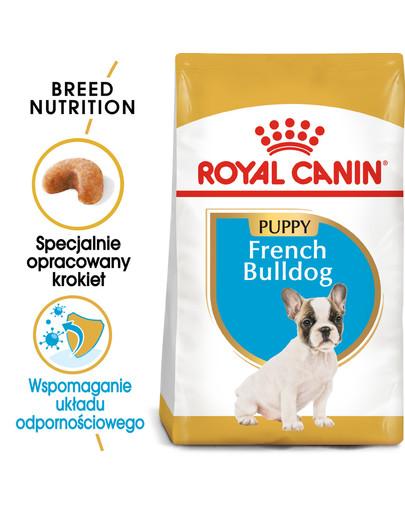 French Bulldog Junior karma sucha dla szczeniąt do 12 miesiąca, rasy bulldog francuski 10 kg