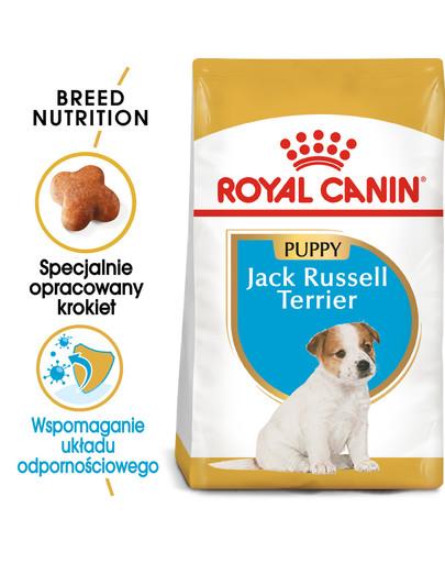 Jack Russell Terrier Junior karma sucha dla szczeniąt do 10 miesiąca, rasy jack russel terrier 1.5 kg