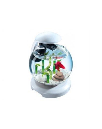 Cascade Globe-Szklana kula z filtrem
