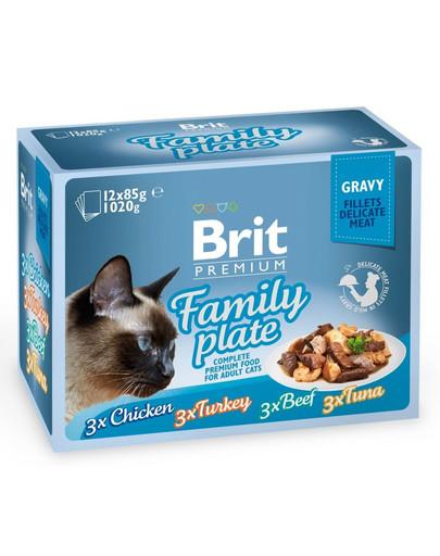 Premium Cat pouch gravy fillet Family plate Saszetki w sosie dla kotów, mix smaków 1,2 kg (12x85 g)