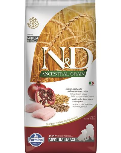 N&D AncestralGrain Chicken & Pomegranate medium&maxi Puppy 12 kg