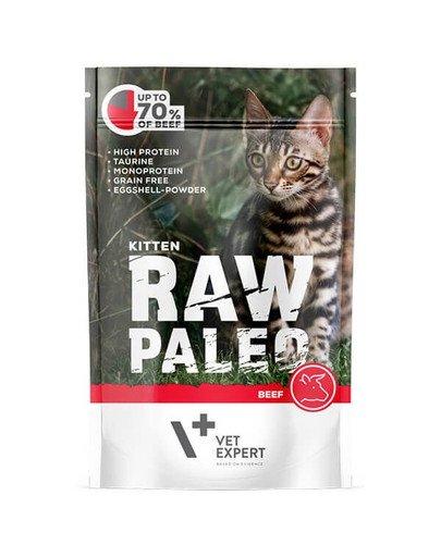 RAW PALEO Kitten beef 100 g mokra karma dla kociąt wołowina