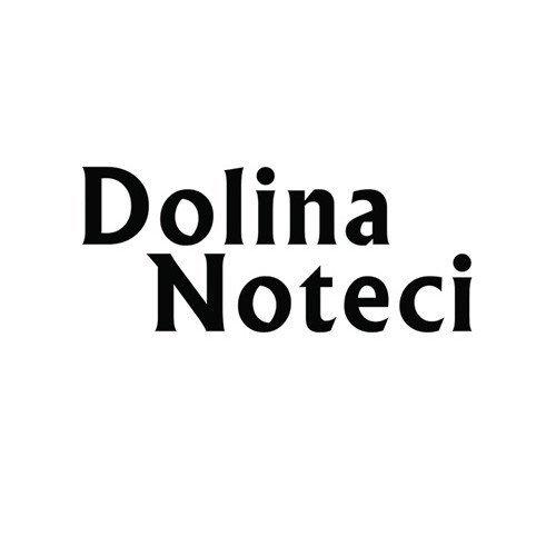 Logo Dolina Noteci