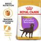 Labrador retriever adult sterilised 12 kg dla psów rasy labrador retriever powyżej 15 miesiąca życia po zabiegu sterylizacji